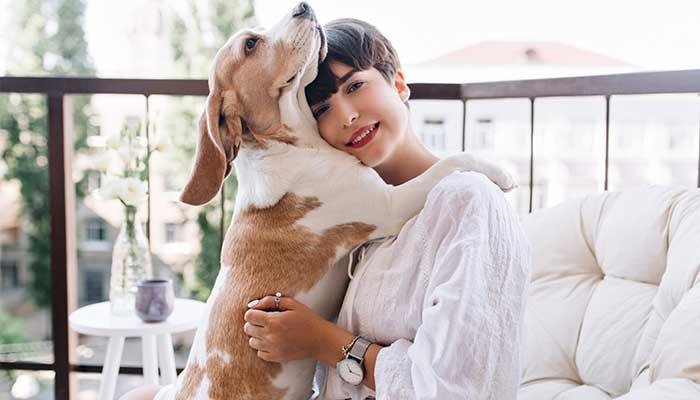 Animaux domestiques : utiliser l'argent colloïdal chez le chien et le chat