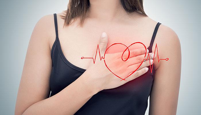 Les artères : des vaisseaux sanguins au coeur de la vie