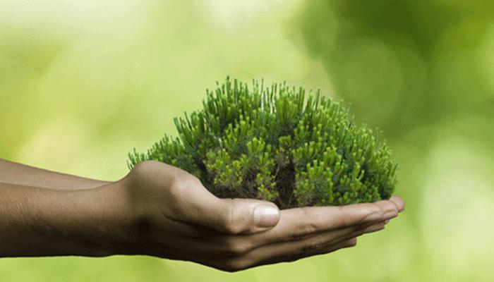 La Vie Naturelle : éthique et qualité